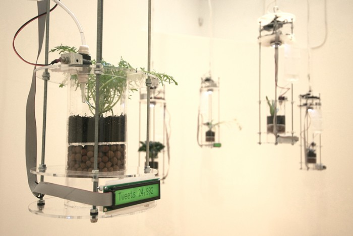 Planthropy_wide11